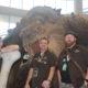 Lexington Comic & Toy Convention Review