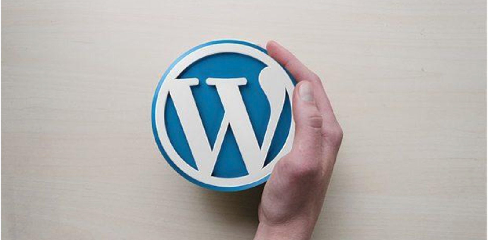 A Guide on Fixing the 403 Forbidden Error in WordPress - The